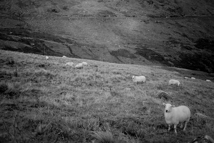 Snowdon Wales Photographer 04