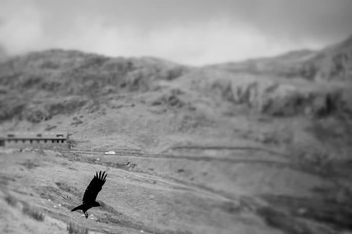 Snowdon Wales Photographer 28