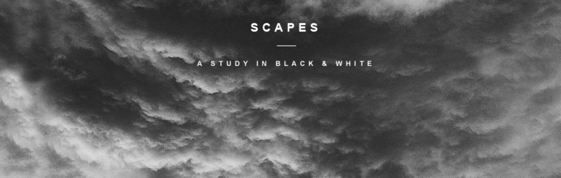A Study in Black & White